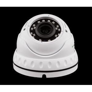 Камера для видеонаблюдения GV-060-IP-E-DOS30V-30
