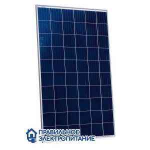 Солнечная панель Risen RSM60-6-280P