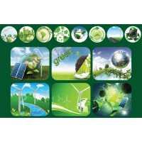 Зеленая экономика это